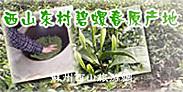 石公山风景区(首页)